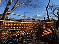 Persimmon drying in Fujinomiya,Shizuoka,Japan(吊るし柿白糸の滝下流) DSCF0017.jpg