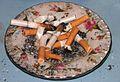 Pety, papierosy, cigarets.jpg