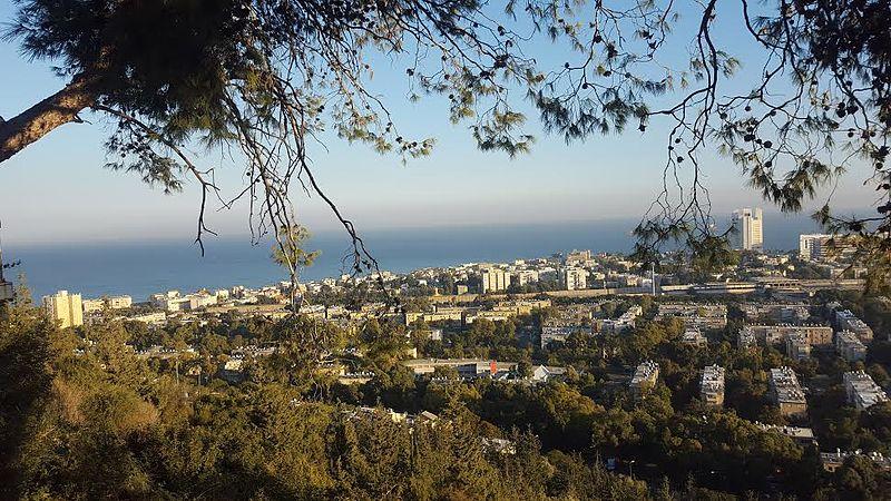 עמדת תצפית סטלה מאריס-נוף העיר חיפה