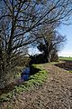 Pincey Brook south from Chelmsford Road, Hatfield Heath, Essex 03.jpg