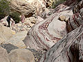 Pine Creek Canyon south fork 2.jpg