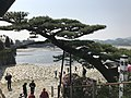 "Pine Tree ""Yarikokashi no Matsu"" near west entrance of Kintaikyo Bridge.jpg"