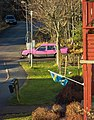 Pink Volvo and torn flag.jpg