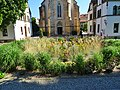 Pirna, Germany - panoramio (262).jpg