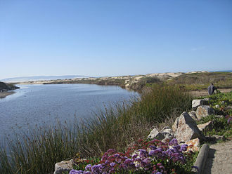 Pismo Beach, California - Pismo Creek estuary