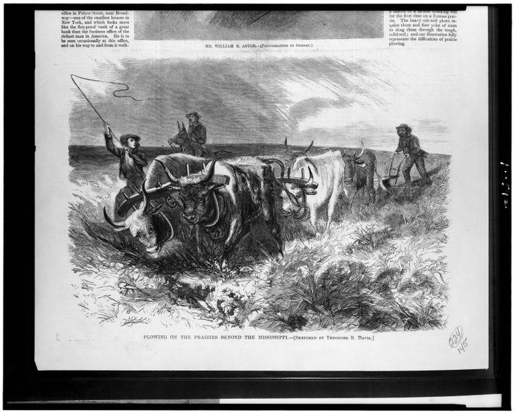 Plowing on the prairie beyond the Mississippi - sketched by Theodore R. Davis. LCCN90712909