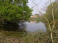 Pond, Pilley Bailey, New Forest - geograph.org.uk - 408269.jpg