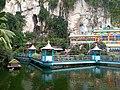 Pond in Batu.jpg
