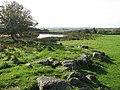 Pond on Gaer Hill - geograph.org.uk - 1555314.jpg