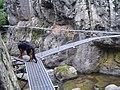 Ponts de les Gorges de Carançà (agost 2006) - panoramio.jpg