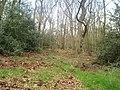 Priestclose Woods - geograph.org.uk - 159986.jpg