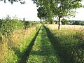 Public footpath to the A146 - geograph.org.uk - 1422626.jpg