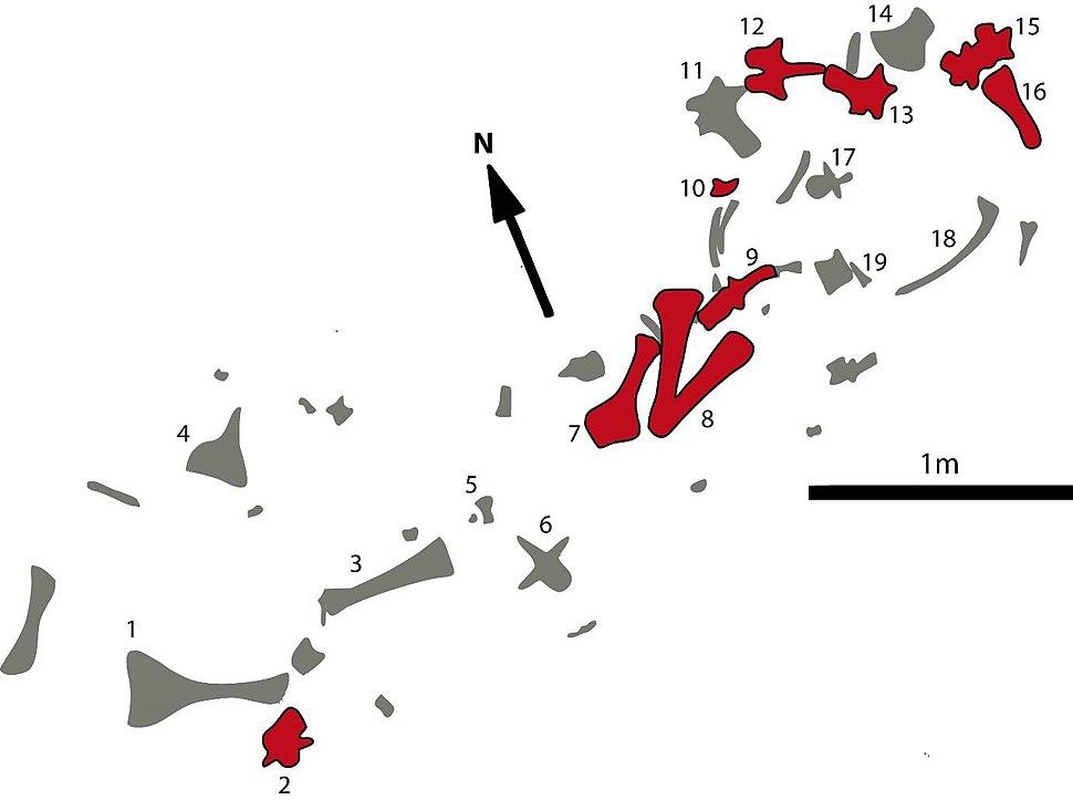 Pulanesaura quarry map