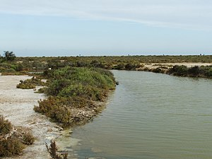 Punta Entinas Sabinar 1.jpg
