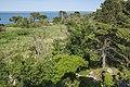 Réserve naturelle régionale de Sainte Lucie 01.jpg
