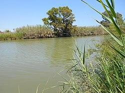 Río Guadalhorce 03.JPG