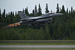 RED FLAG-Alaska 12-2 120612-F-MQ656-292.jpg