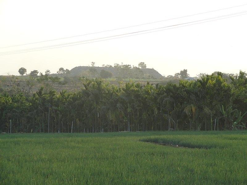 File:RKC Yadav Farms - panoramio (1).jpg