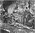 Ranjenici 2. dalmatinske brigade na Milinkladama.jpg