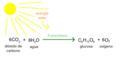 Reacción-química-de-la-fotosintesis.png