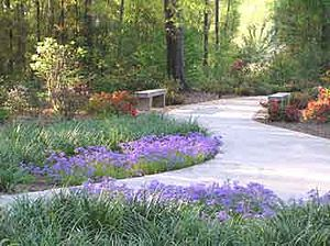 Mobile Botanical Gardens - Image: Rhododendron 2b