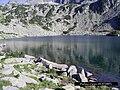 Ribnoto lake - panoramio.jpg