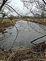 River Blithe between Nethertown and Hamstall Ridware - geograph.org.uk - 1157944.jpg