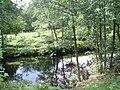 River Nidd - geograph.org.uk - 1467308.jpg