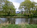 Riverside houses and willows - April 2014 - panoramio.jpg