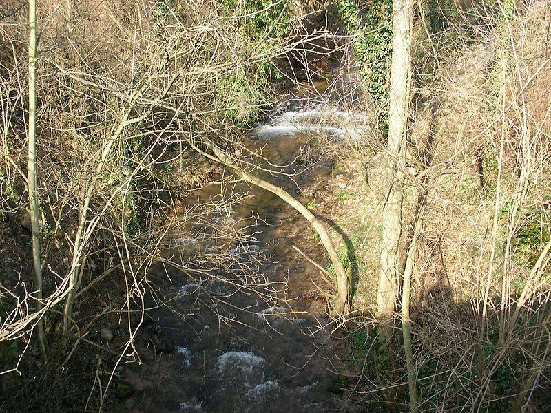 File:Rivière (Ribeauvillé).jpg