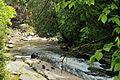 Rivière Akiawenrahk (Rivière à la truite).jpg