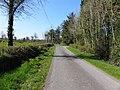 Road at Cornacrum (geograph 2870368).jpg