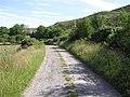 Road near Crocknamaddy - geograph.org.uk - 1380269.jpg