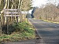Road through forest - geograph.org.uk - 686553.jpg