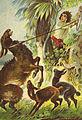 Robinson von Offterdinger und Zweigle Kap 4.jpg