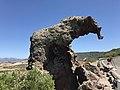 Rocher de l'éléphant (Castelsardo).JPG