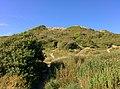 Rock-cornwall-england-tobefree-20150715-165057.jpg