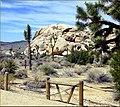 Rock PIle and Fence, Joshua Tree NP 4-13-13 (8661296354).jpg