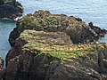 Rock off Western Combe Cove - geograph.org.uk - 806605.jpg