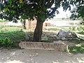 Rolu Majra, 140102, Rupnagar, Punjab, India - panoramio.jpg