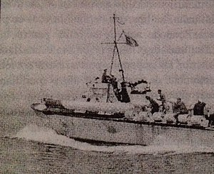 Siege of Odessa (1941) - Romanian motor torpedo boat in action