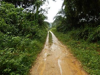 Route à la saison des pluies (Cameroun) (3).jpg