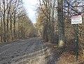 Route des Vieilles Garennes - Forêt de Chantilly.jpg