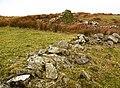 Ruins of Craigbower - geograph.org.uk - 702481.jpg