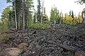 S.R. 14 Lava Flow, Near Duck Creek, Utah (3943445562).jpg