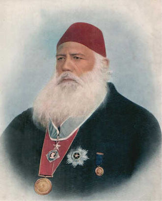 Urdu movement - Sir Syed in his later years, wearing official decorations.