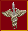 SANDF 7 Medical Battalion Doctor chest insignia.png