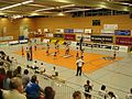 SWE Volley-Team 2009.jpg