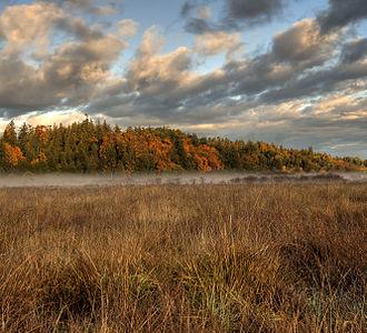 Saanichton - Fall colors in Saanichton, British Columbia