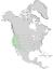 Salix lasiolepis range map 0.png